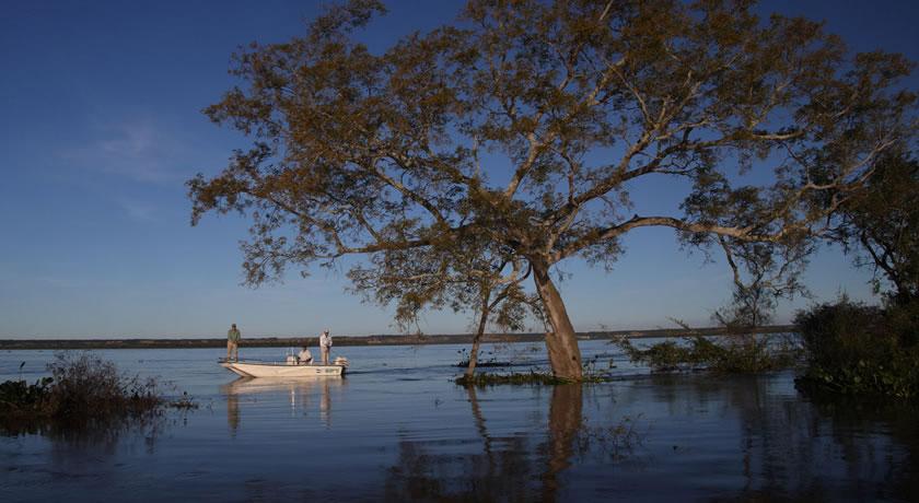 Bellavista - Corrientes